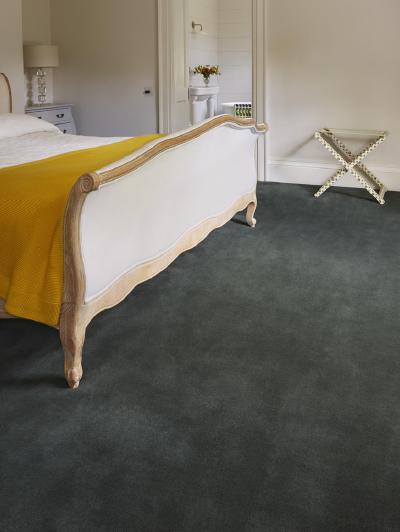 Carpet & Rugs Carpet 3